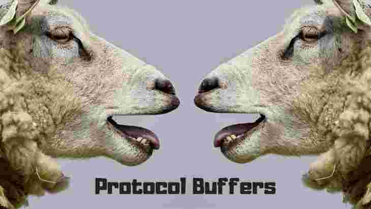 Sheep with Protobuf